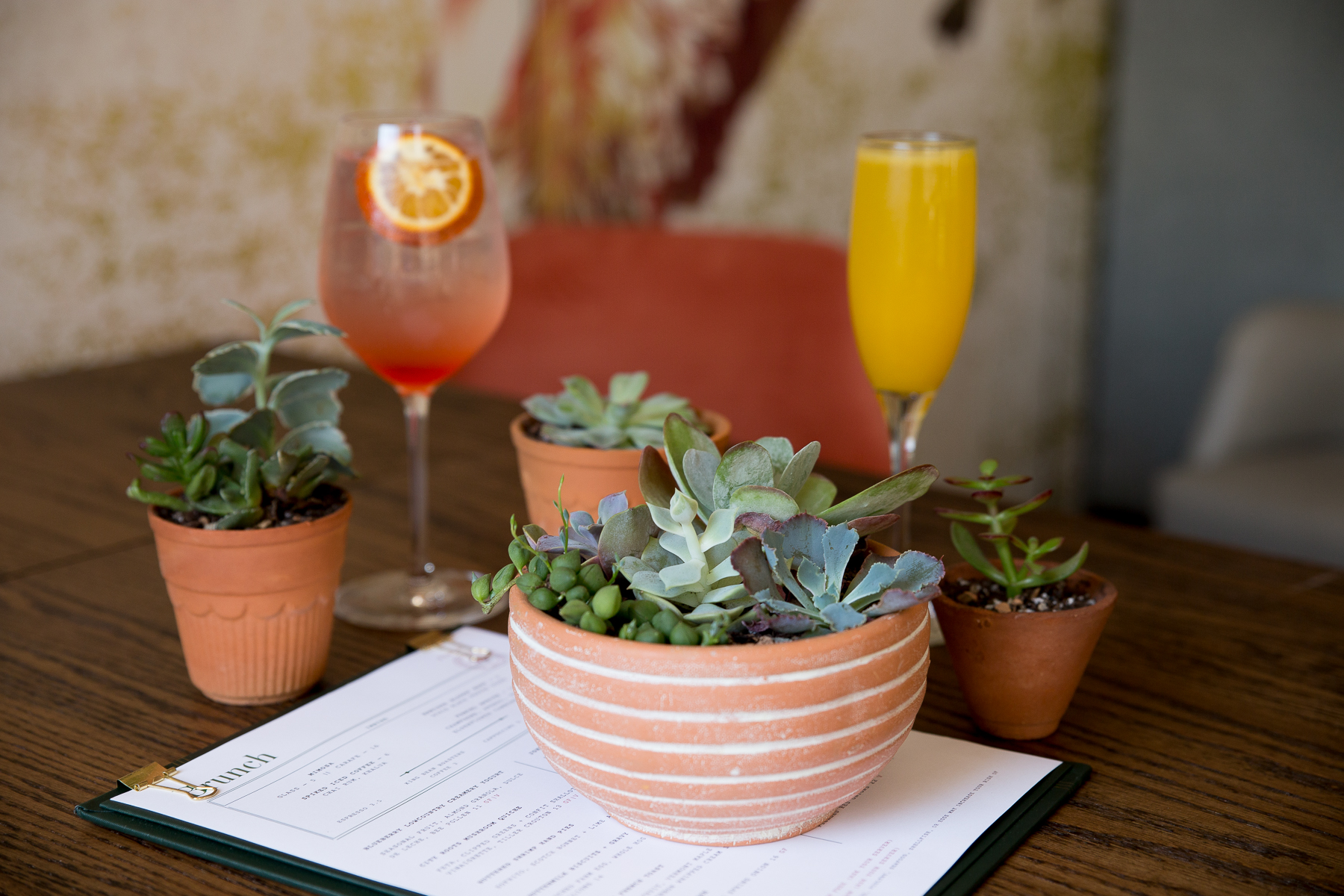 Succulent Sunday Party_Leaf Me Alone-5.jpg