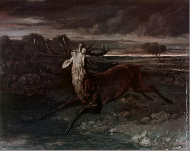 Gustave Courbet - Le Cerf forcé
