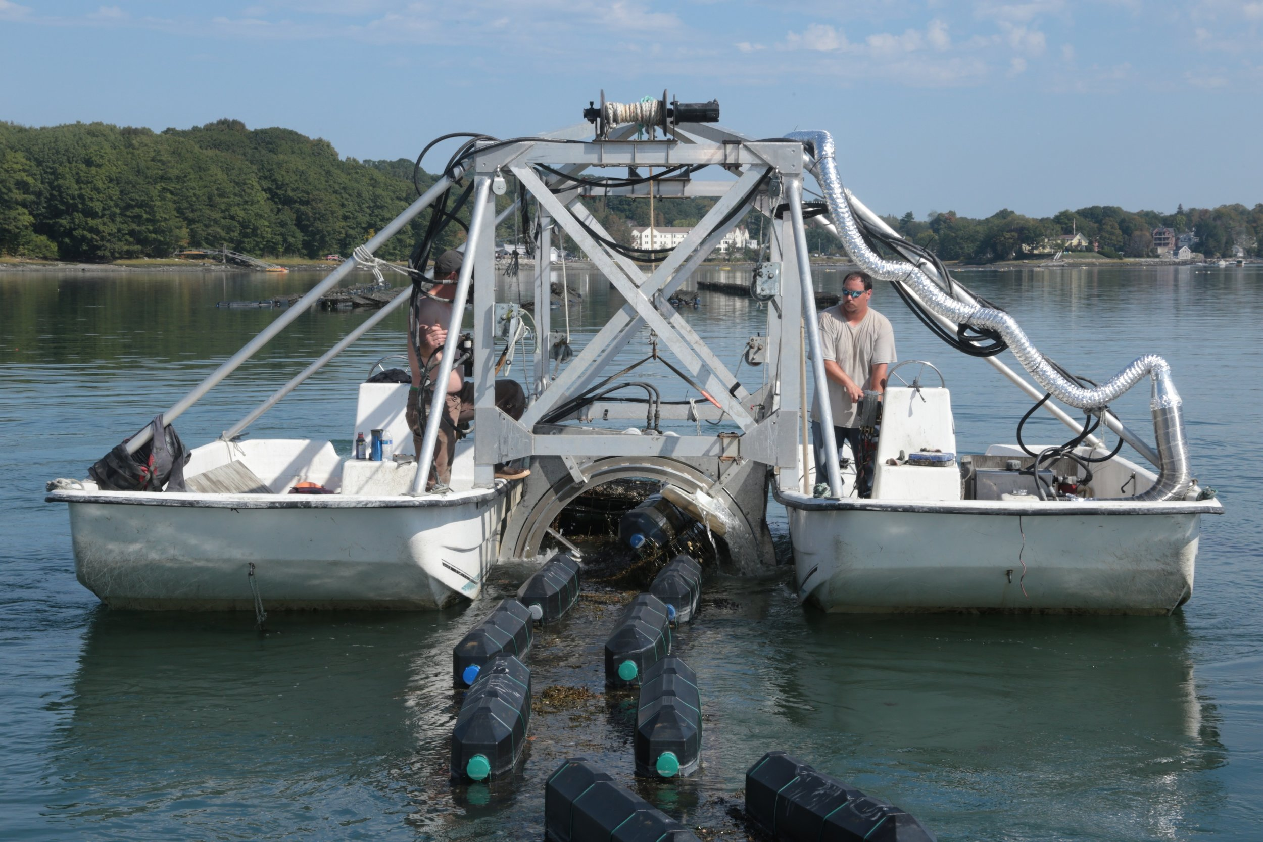 A great day of oyster farming is when…. - The eagles fly, the sturgeon jump, and no equipment breaks!