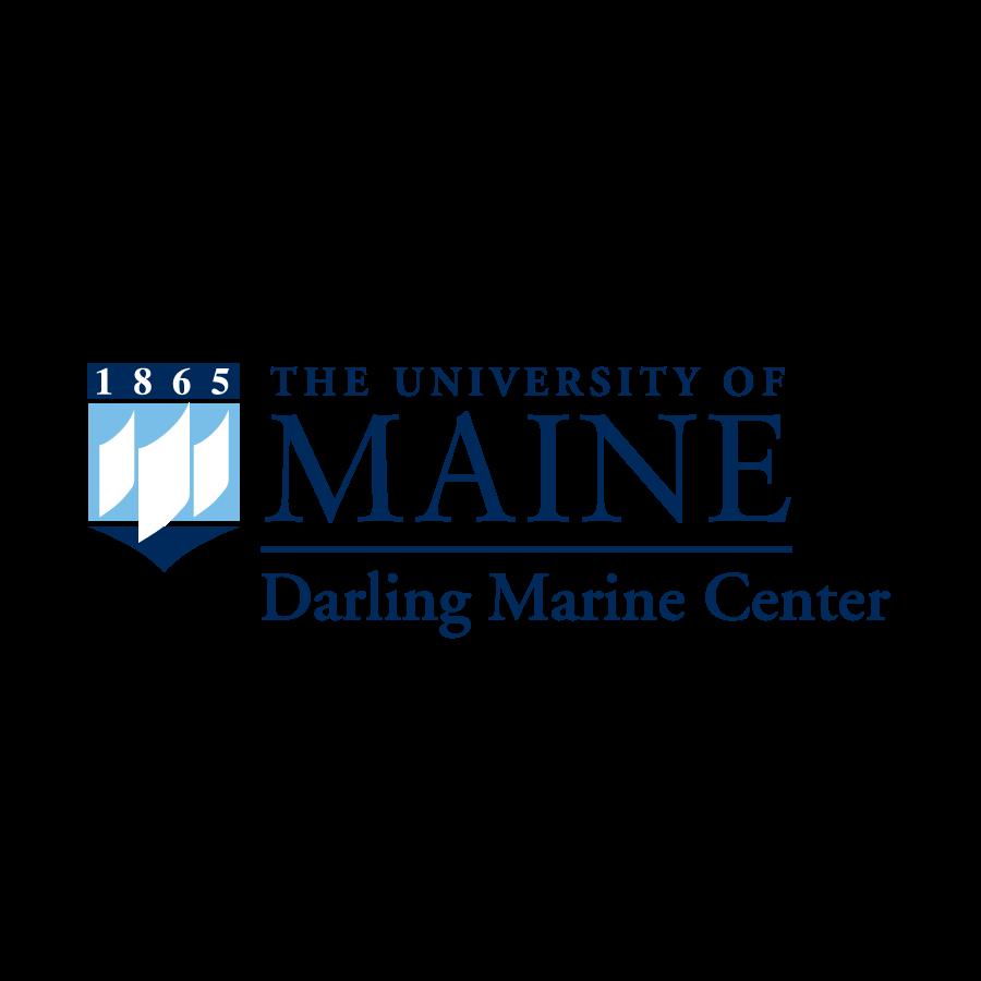 darling square logo.png