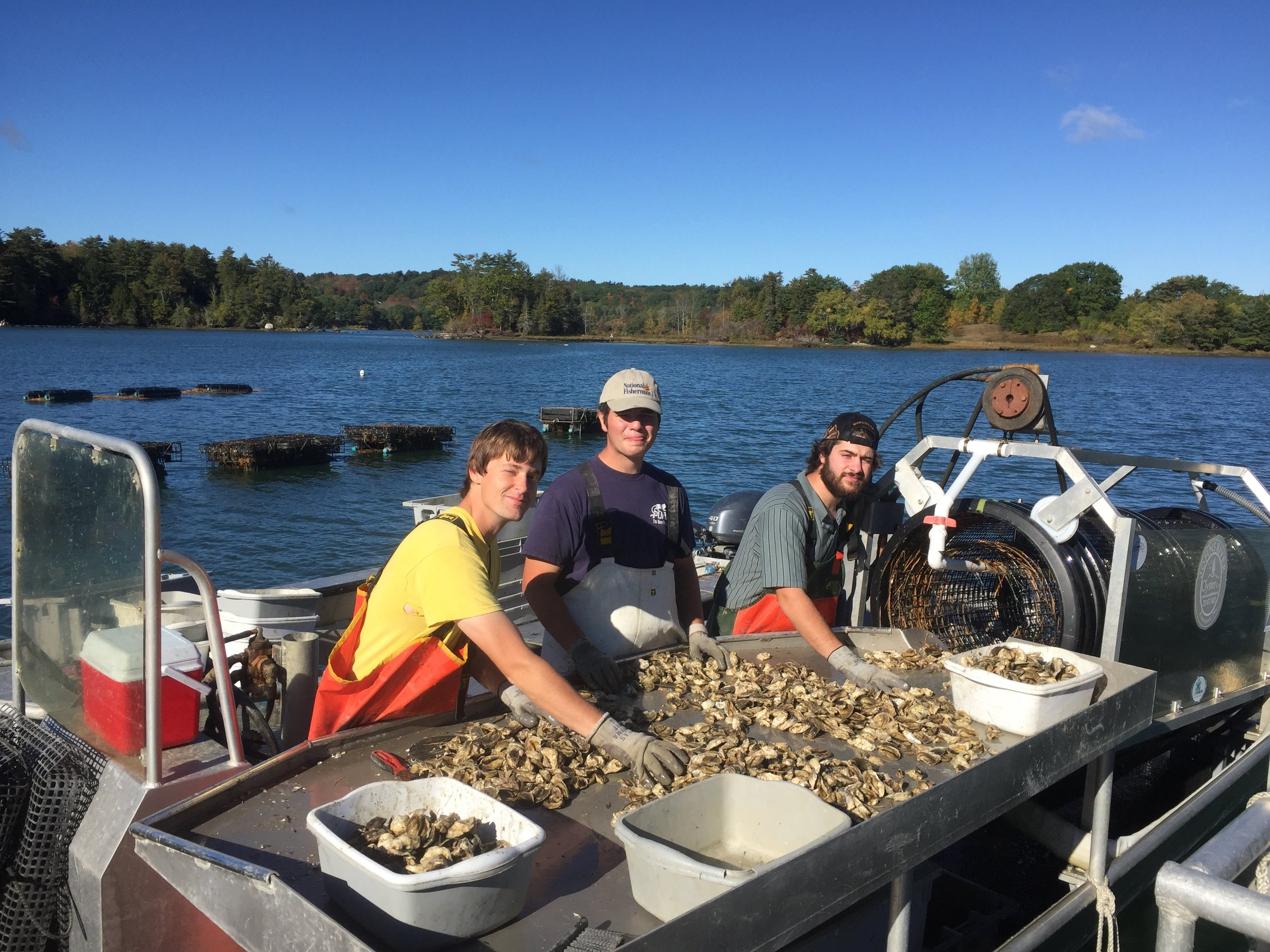 oyster boat sort people.JPG