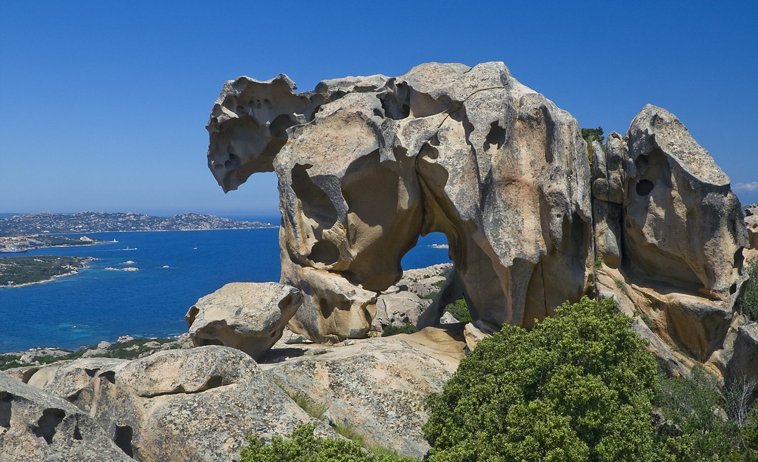 Natural sculpture of a rock resembling a bear, overlooking the sea