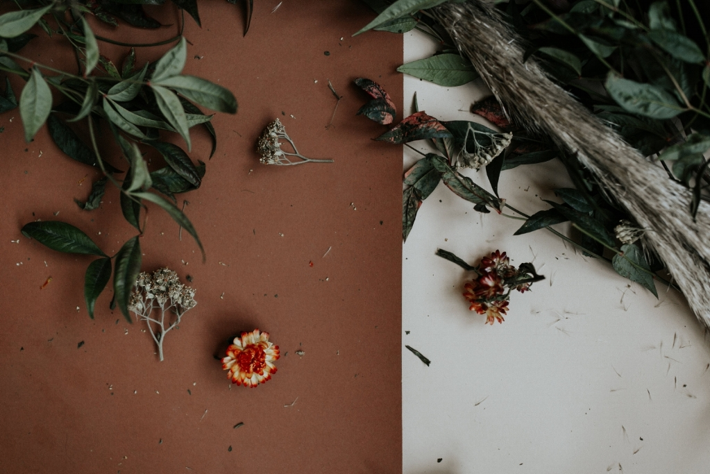 Live Botanical Fall Tablescape Content Creation 05