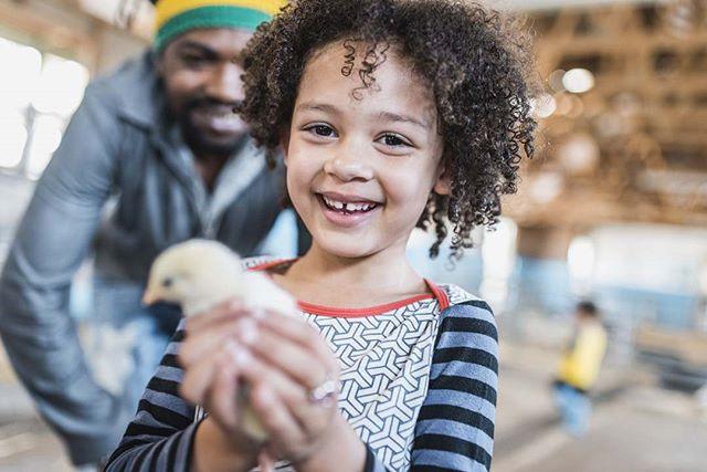#KidLife Visit Us Online:  Raleighkidsdirectory.com #Kids #outdoorliving #farm  #Countrylicing #Mama #whatkidslike #exploration #kidscan #Kidplay #Moms #Farmlife #northcarolinaliving