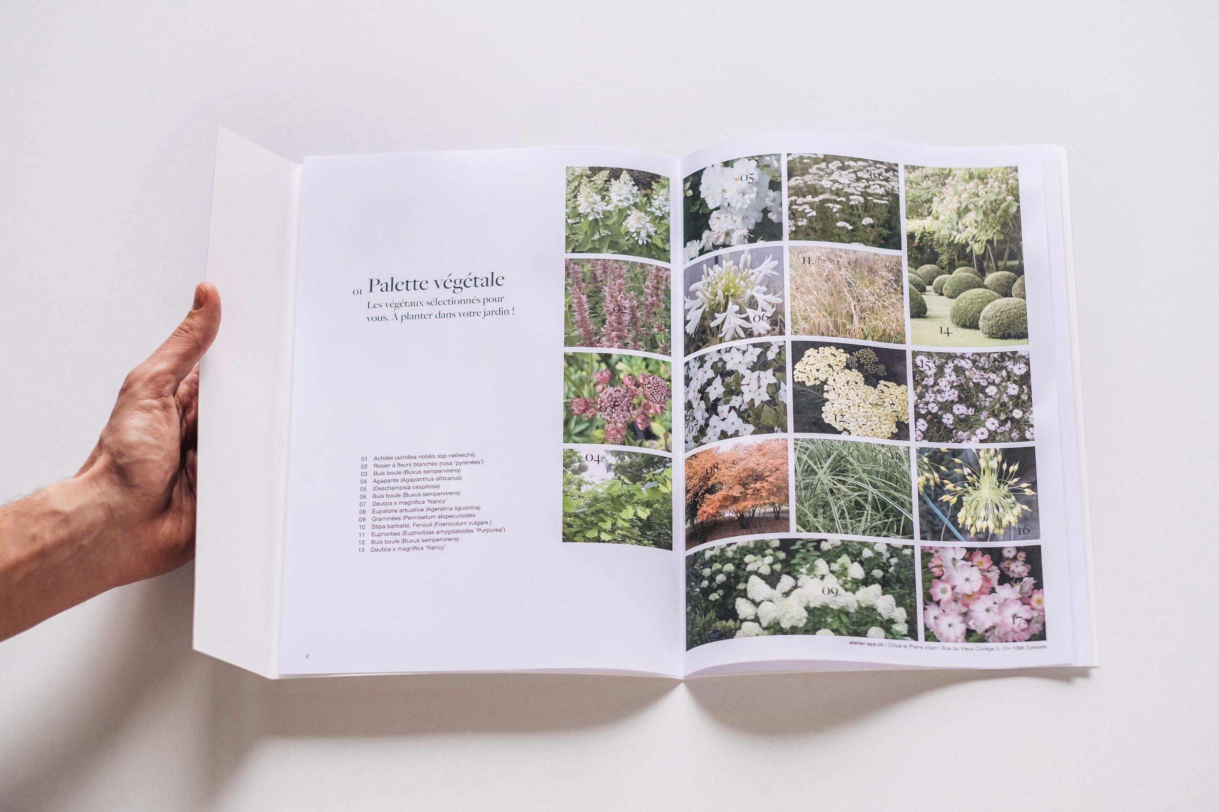 Palette végétale personnalisée - Composition végétale sur-mesure