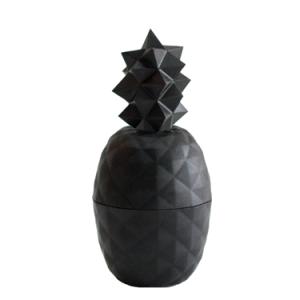 pineapple-black-1-300x300.png