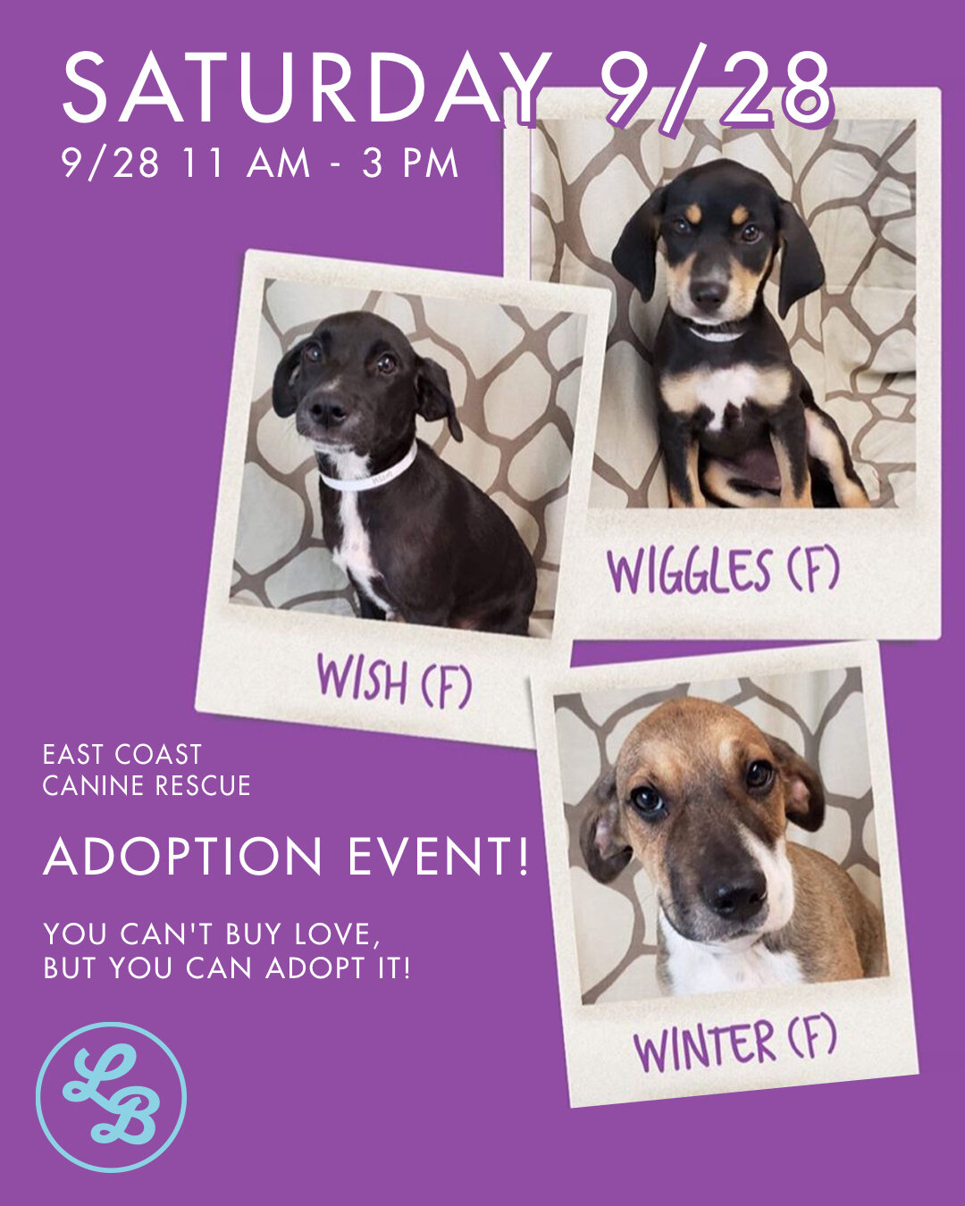 - Today I'm really psyched to share with you that we are hosting an Adoption Event on September, 28, 2019 at our store in downtown Montclair from 10:00 am to 3:00 pm. My new friends from East Coast Canine Rescue are bringing a bunch of dogs and some cats too who are all looking for forever homes!