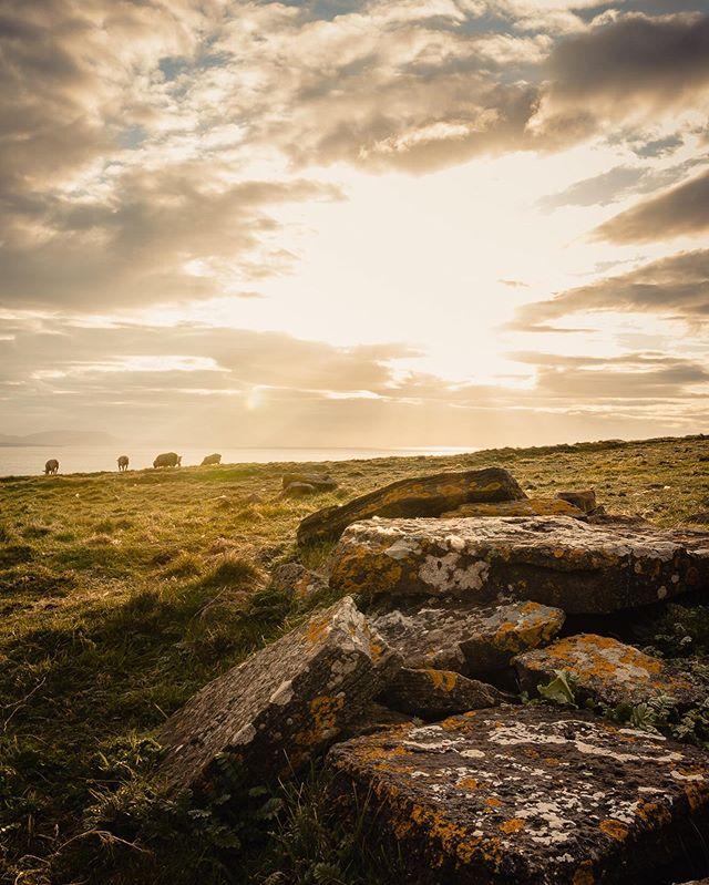 Stairway to heaven ✨ . Comment ça va vous ? ________________ #ireland #irlande #InstantIrlande #igersireland #irelandtravel #frenchroamers #roadtrip #sheepofireland #discoverireland #loveireland #lonelyplanetfr #exploreobserveshare #sunset #lesfrançaisvoyagent #freshairclub