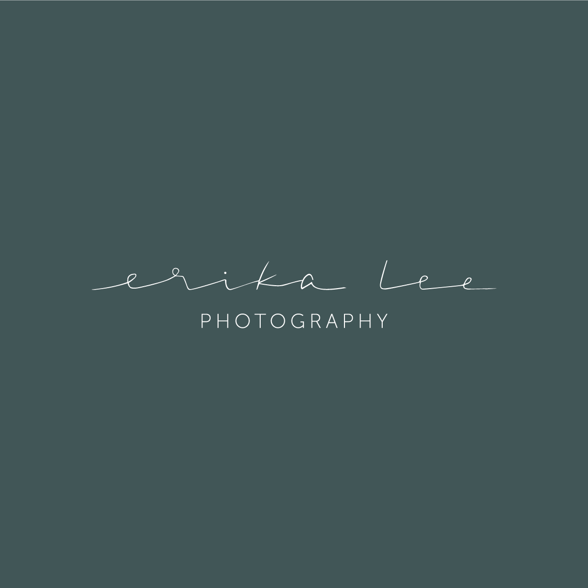 / branding for erika lee photography /