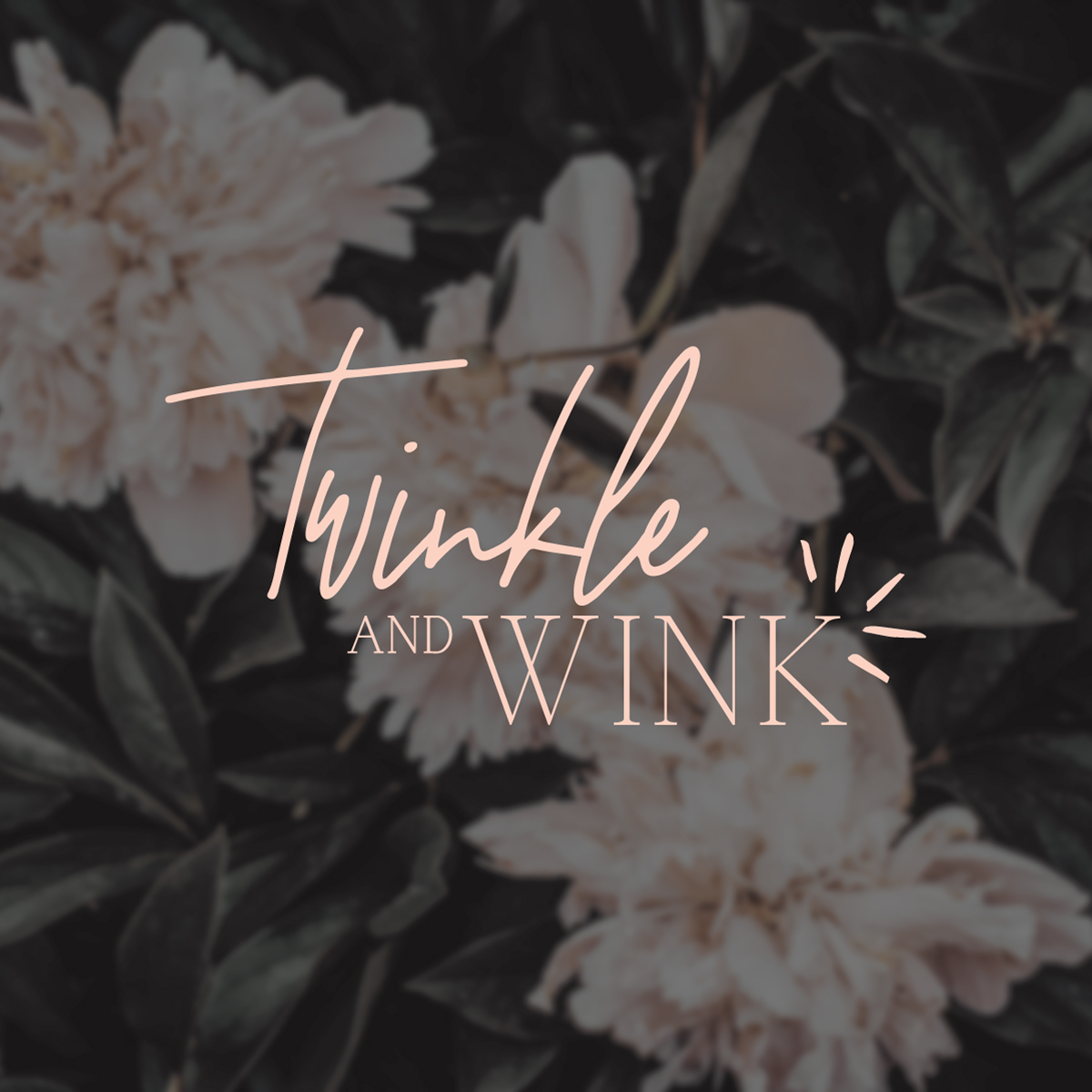 / twinkle and wink branding for eyelash boutique /