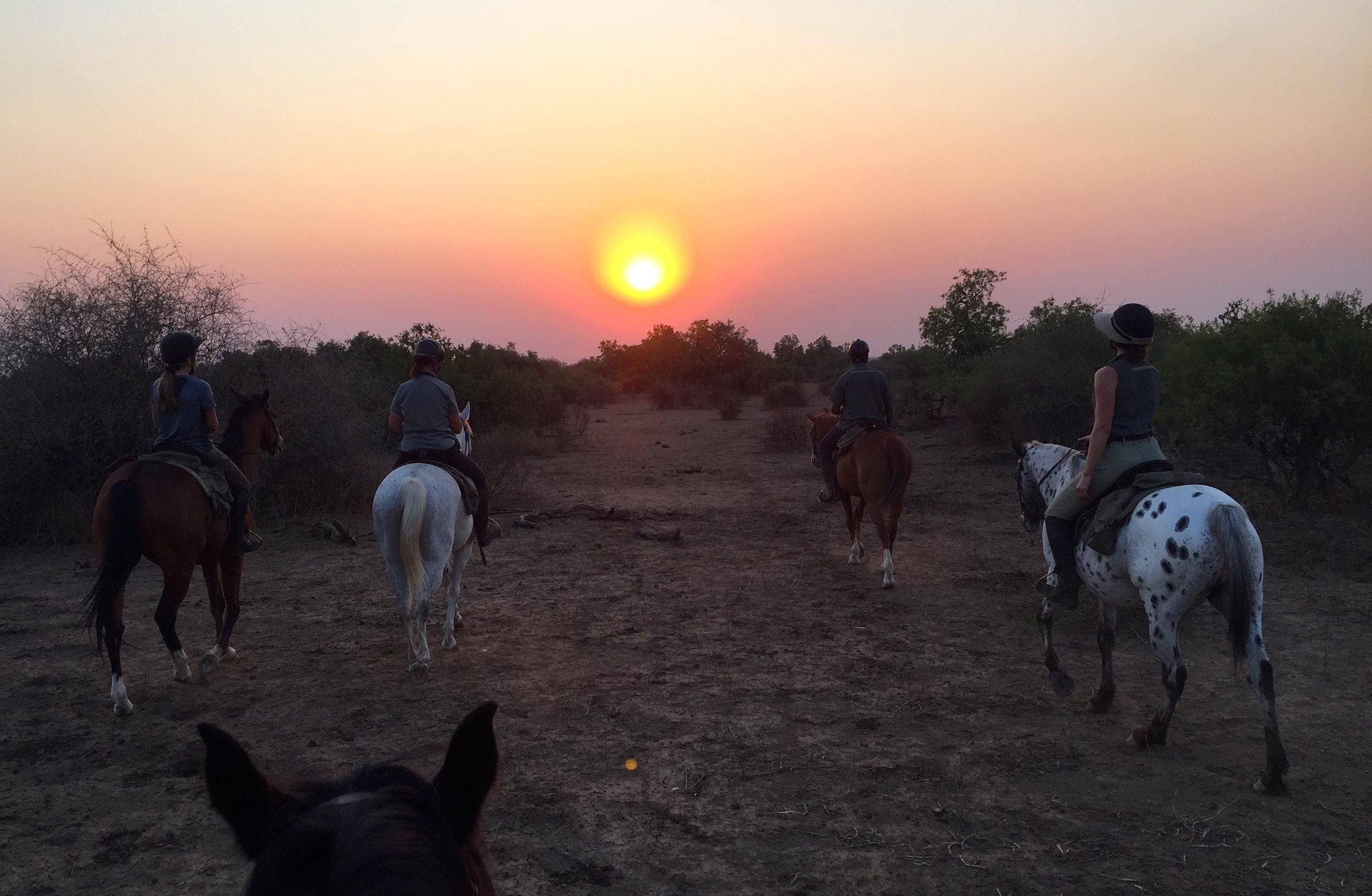 South Africa and Botswana Horseback Safari - April 21-May 1, 2020