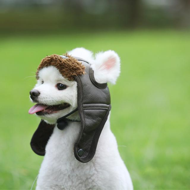 S-XXL-Newest-Autumn-Winter-Style-Cute-Cap-Pet-Costume-Cosplay-Windproof-Pilot-Hat-for-Small.jpg_640x640.jpg