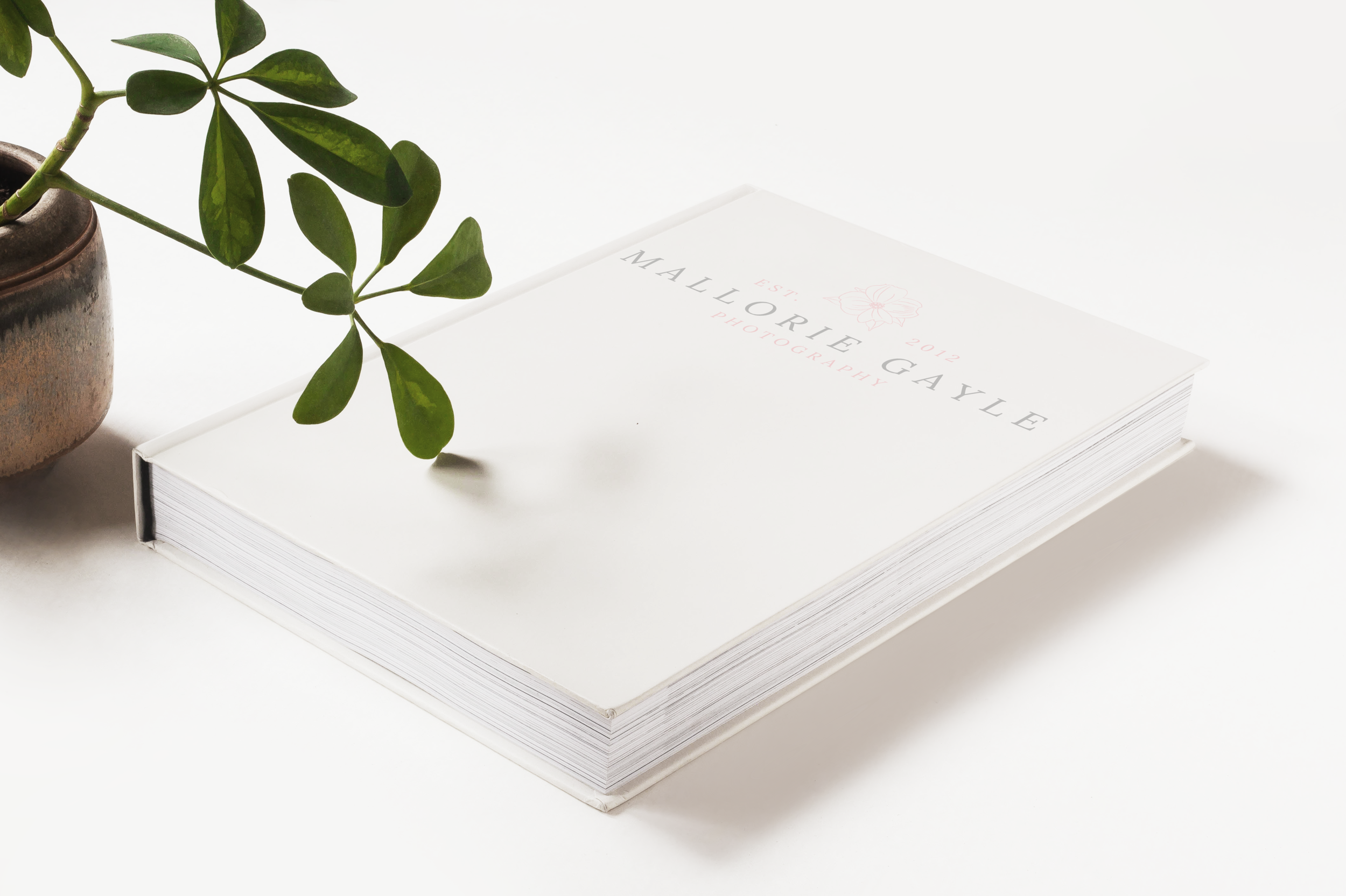 Mallorie Gayle Photography Photo Book Mockup