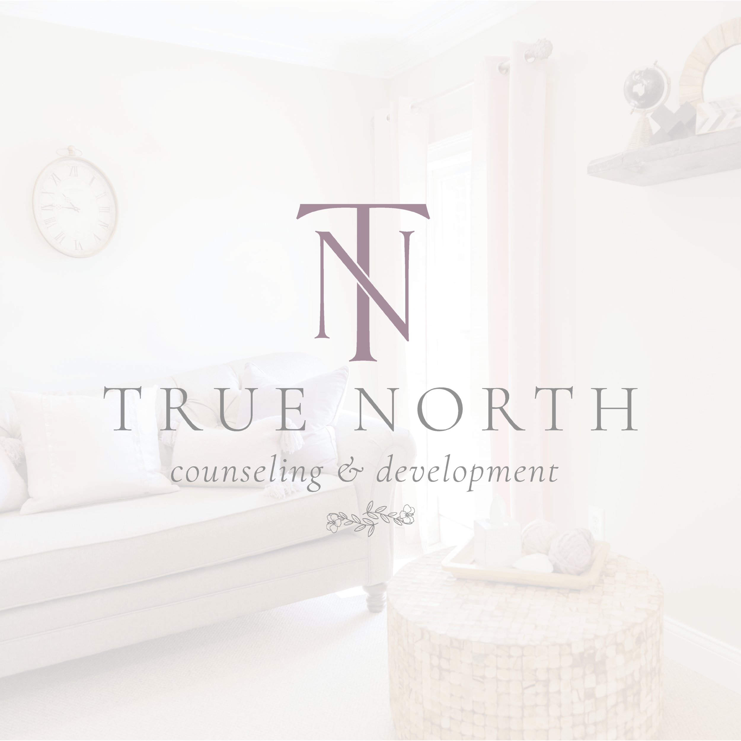 True North Counseling and Development Lexington Kentucky Clinic Brand and Logo Design by Kindly by Kelsea