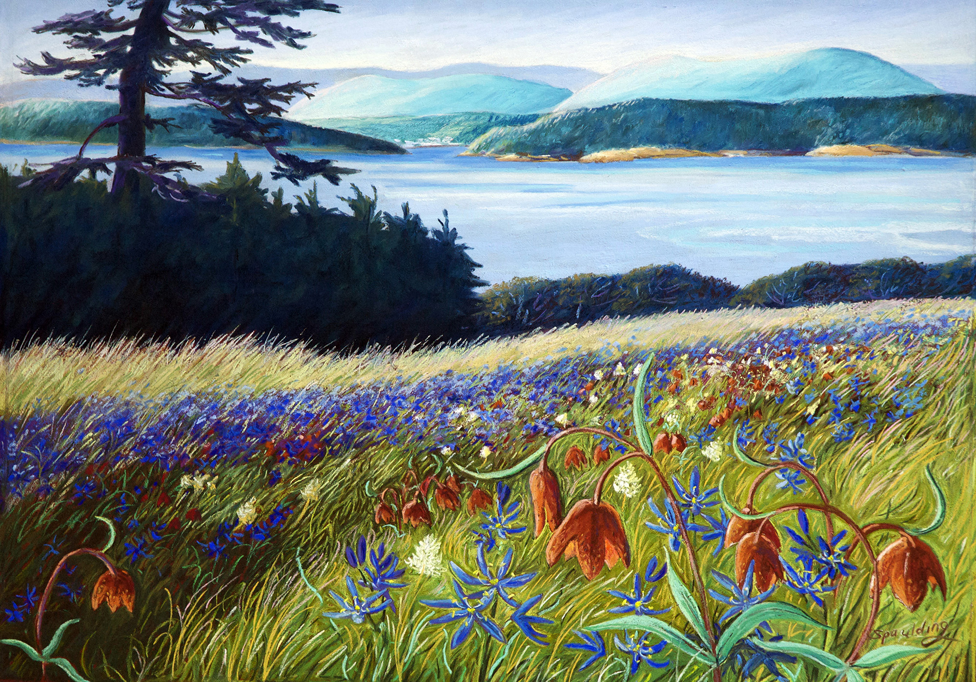 Blue Camas and Chocolate Lily   Pastel  15 x 21""
