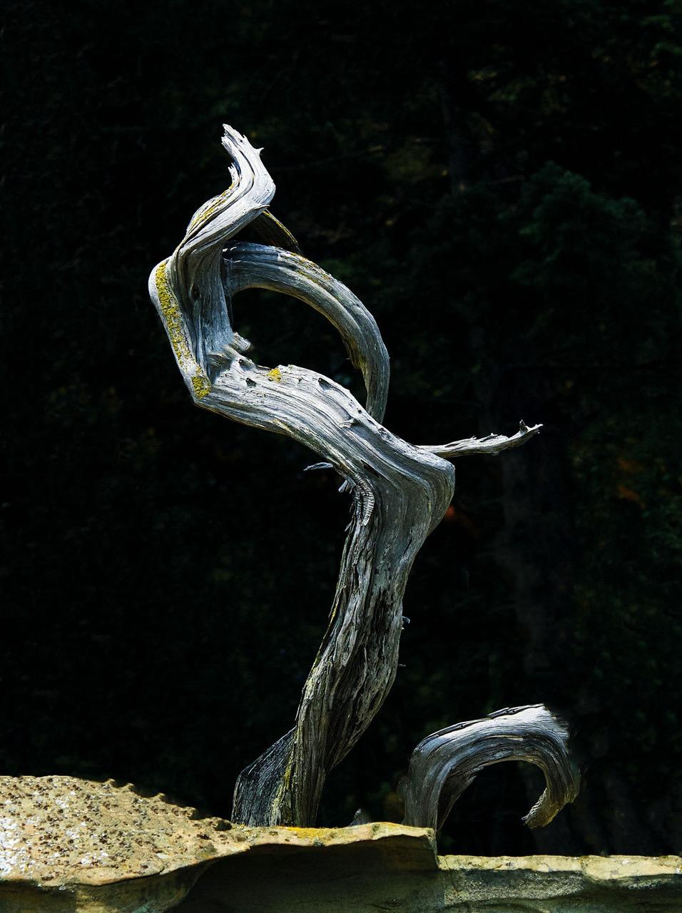 "Sculpture on Patos   10.5 x 14"""