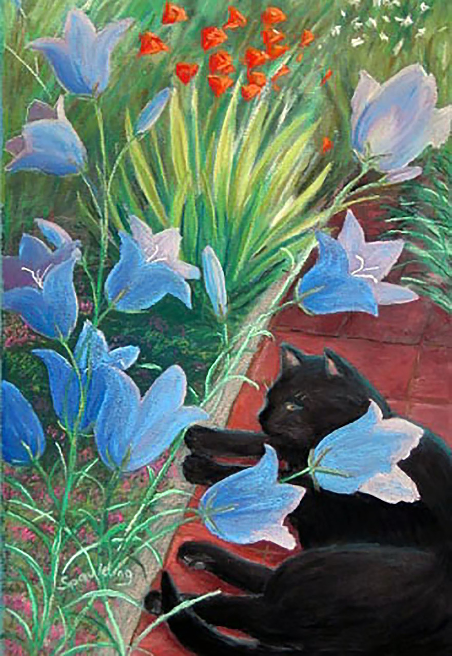 "Cat and Companula   Pastel  12.5"" x 8.6""  SOLD"