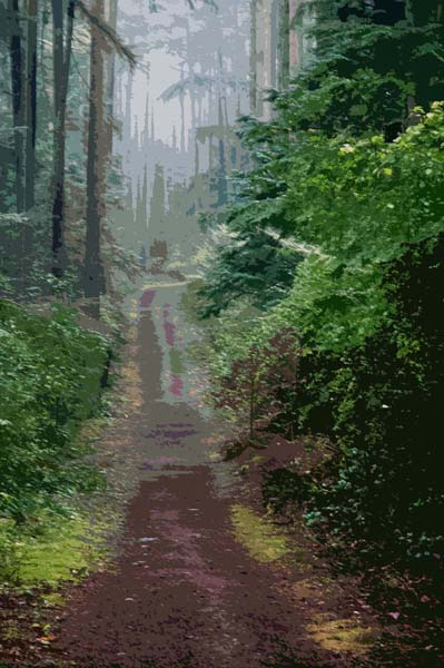 """Path to a Dream   10.5 x 15.37"""""""