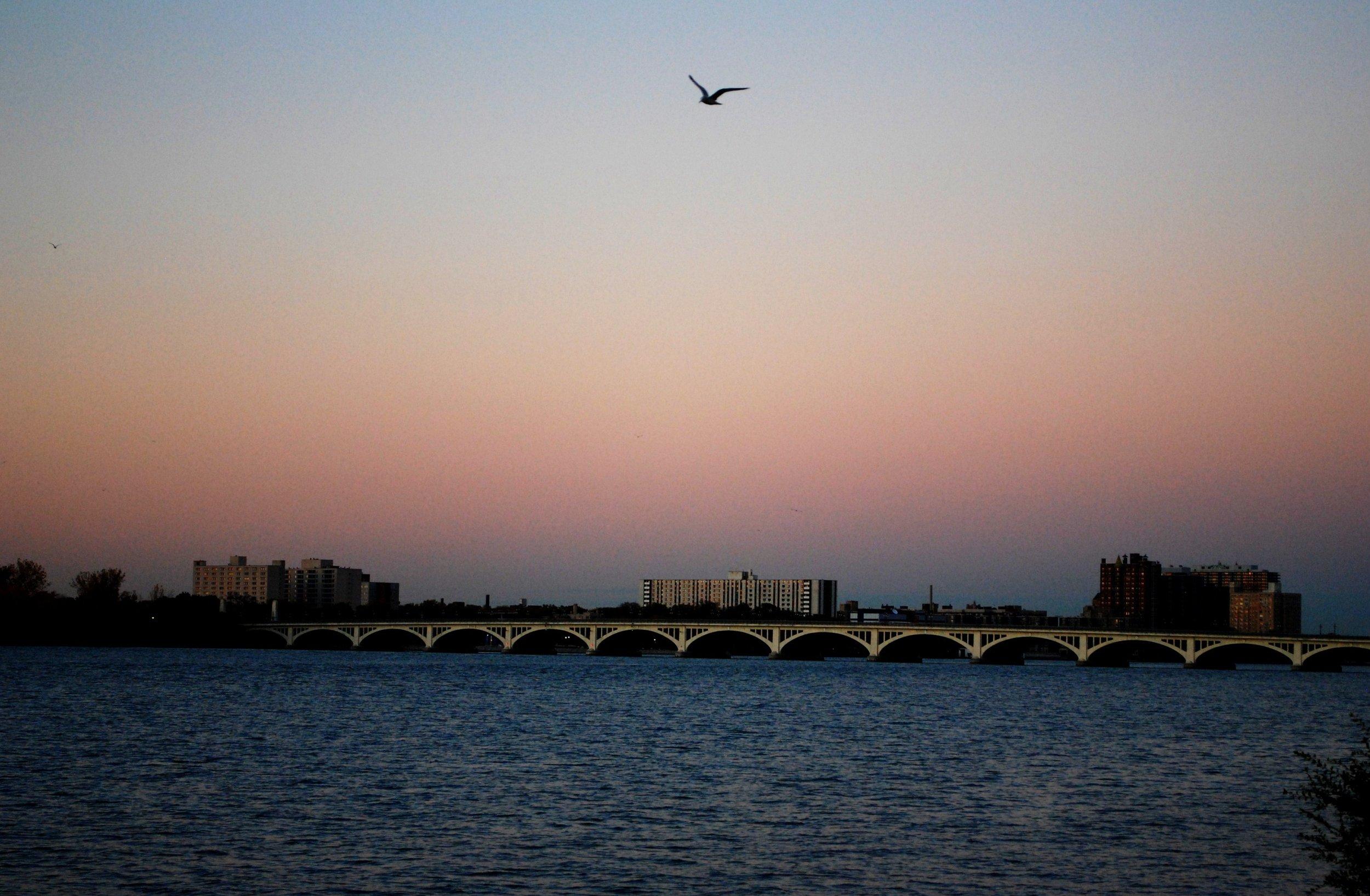 MacArthur Bridge (3).JPG