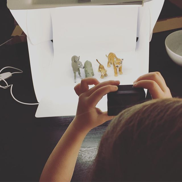 Lichtbox-Experimente. Mit der robusten kleinen @goprode kann auch die 4-Jährige schon experimentieren. Irgendwann muss ich mich dann mal durch die 4 Terrabyte Material arbeiten, die die kleinen Augen in Bild und Ton eingefangen haben. Sind bestimmt ein paar Highlights dabei🙈 #lebenmitkindern #experimentieren #lichtbox #fotografie101 #schleichtiere #mamadarfichauchmal