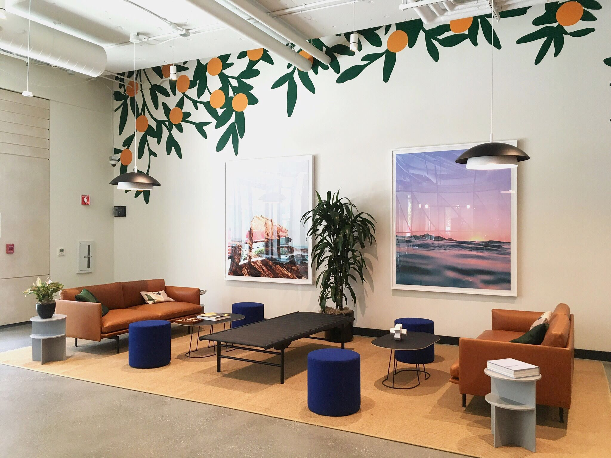 Office-commercial-mural-san-francisco-wework-oranges-wall-and-wall-mural-company.jpg