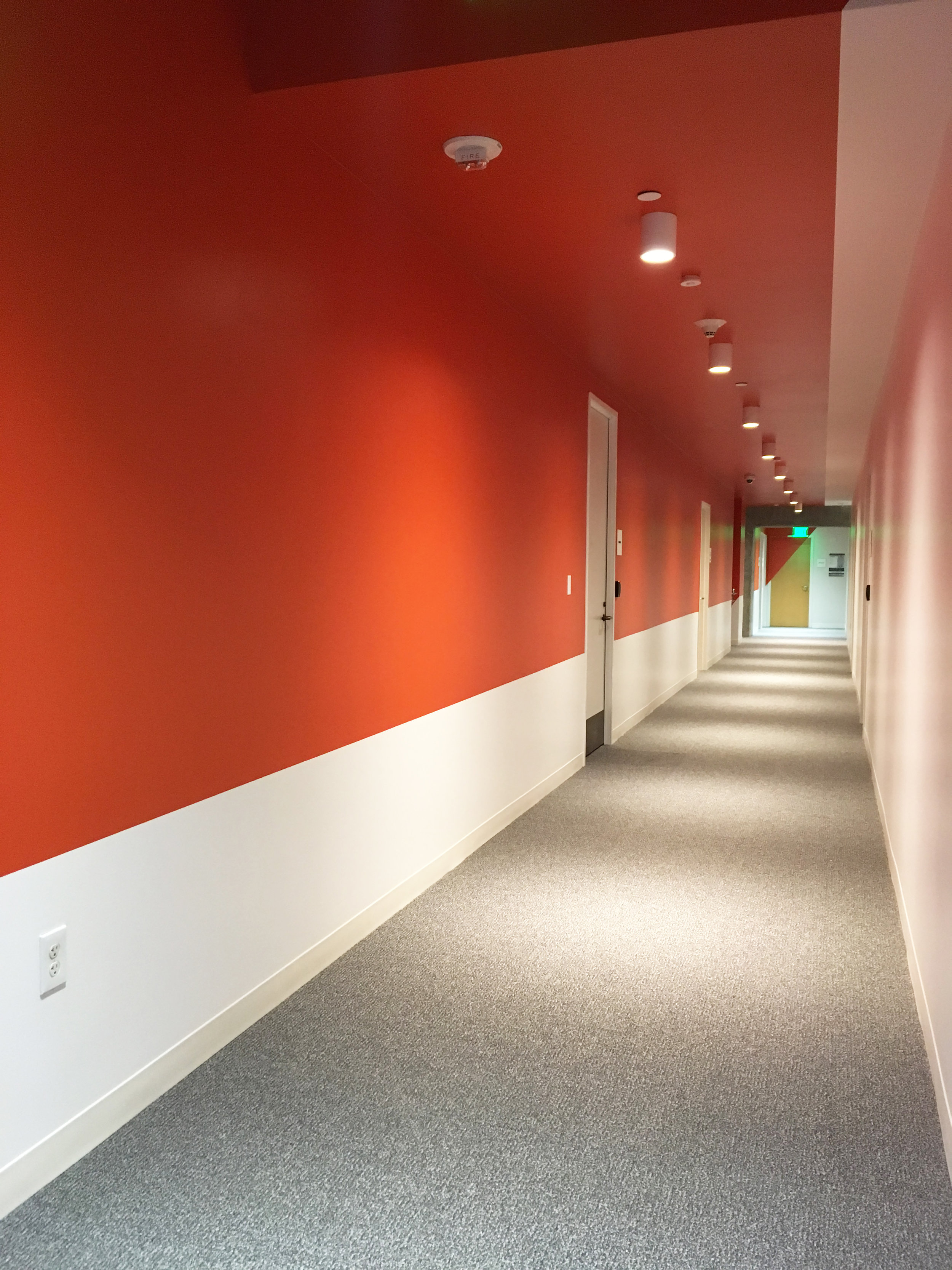 Office-commercial-mural-san-francisco-brex-wall-and-wall-mural-company_004.jpeg