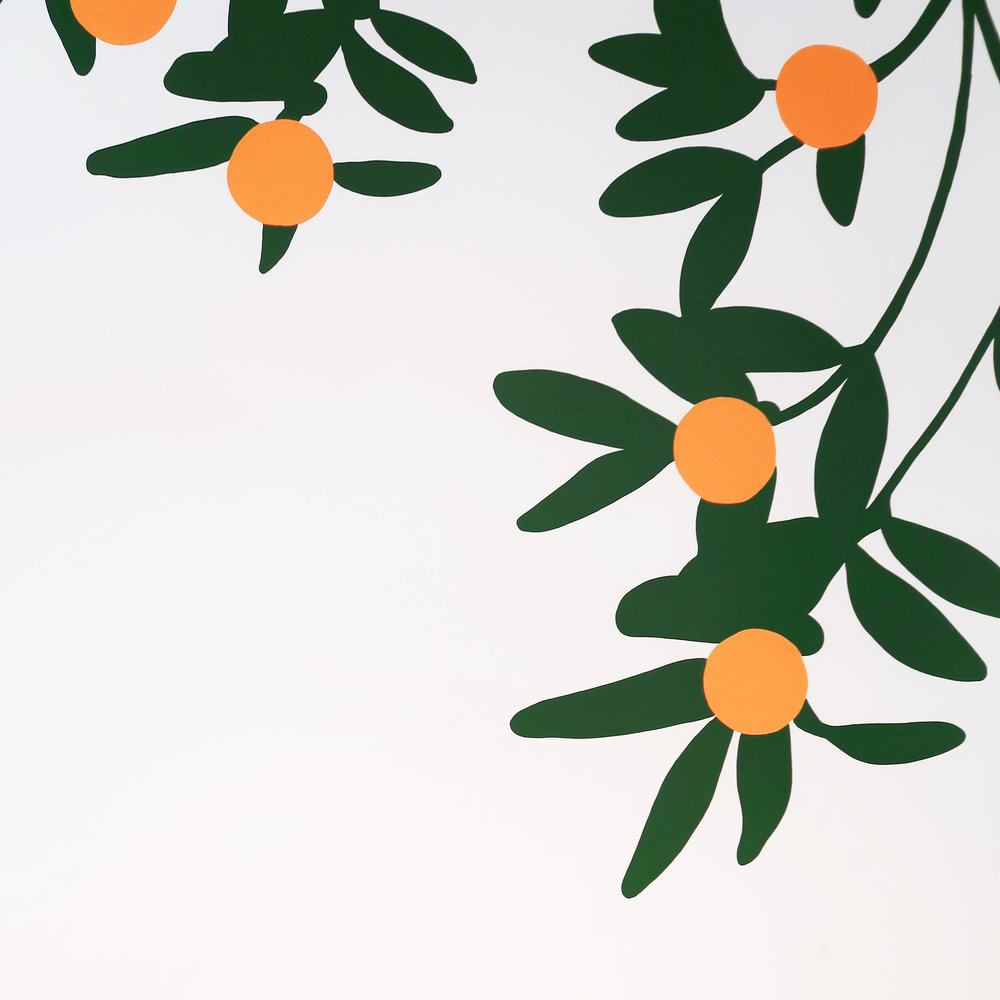 Office-commercial-mural-san-francisco-wework-oranges-wall-and-wall-mural-company_003.jpeg