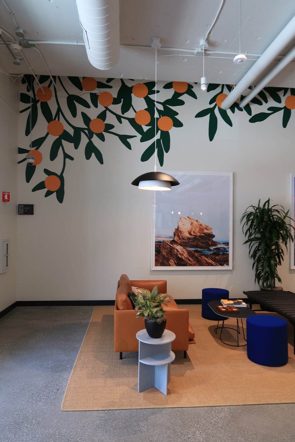 Office-commercial-mural-san-francisco-wework-oranges-wall-and-wall-mural-company_004.jpeg