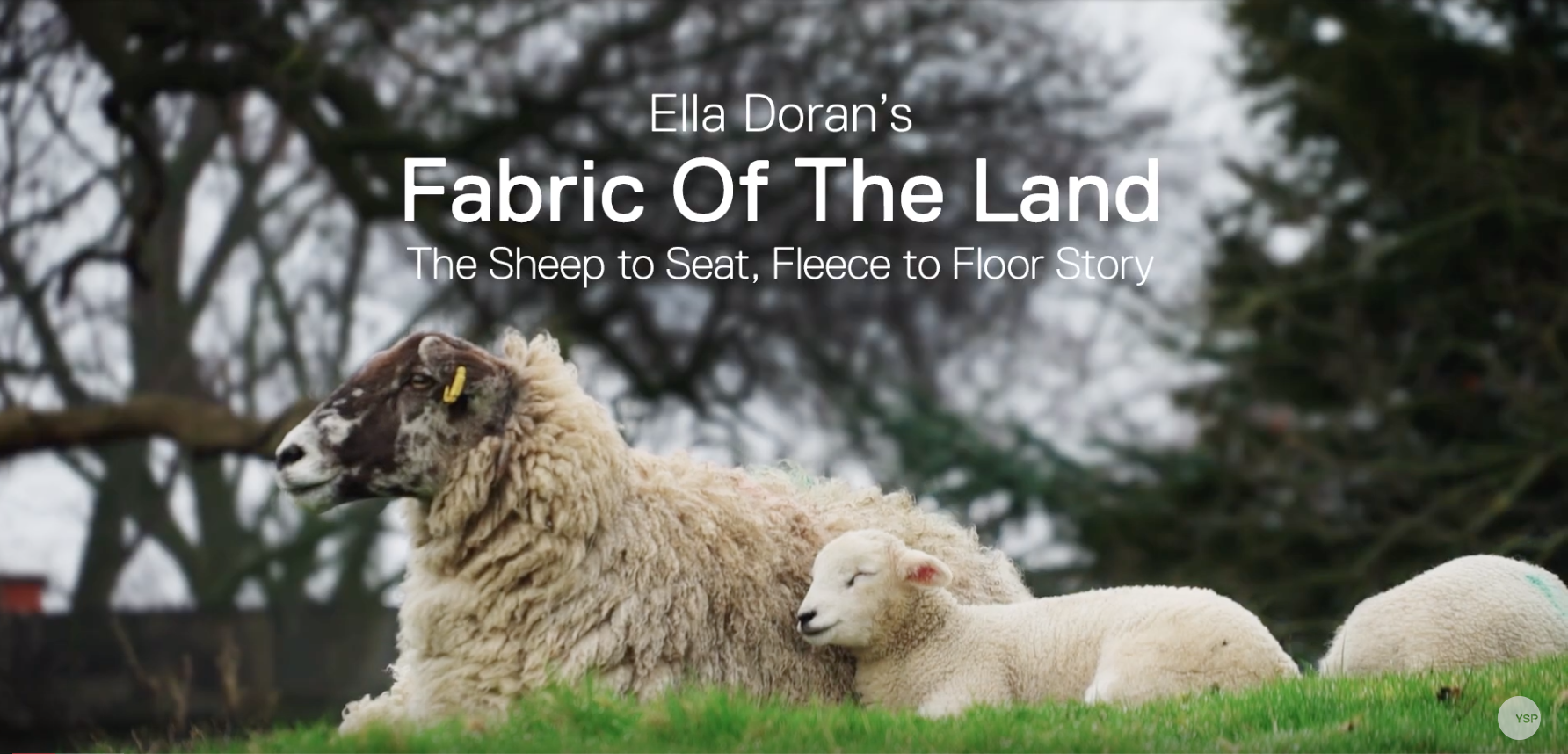 sheep to seat fleece to floor jpg