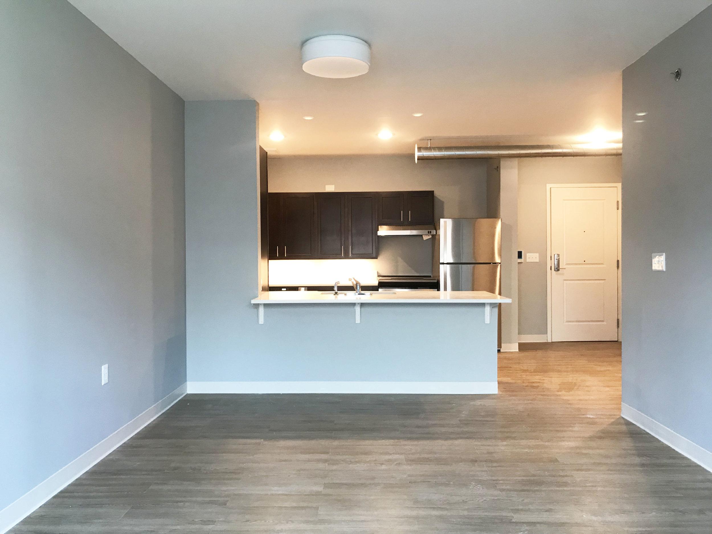 Living-Kitchen.jpg