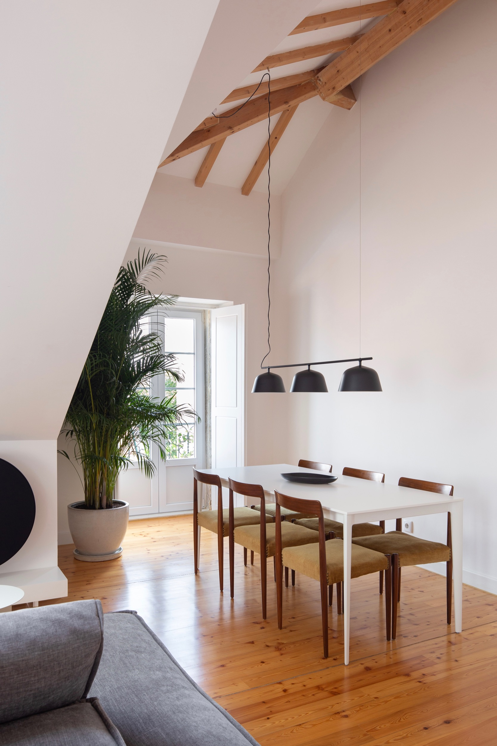 Photo of Lola Cwikowski Studio Travessa da Pereira Apartment residential project showing BoConcept table, Muuto Ambit Rail lamp, vintage dining chairs, B&O Beoplay A9 speaker, and large palm plant