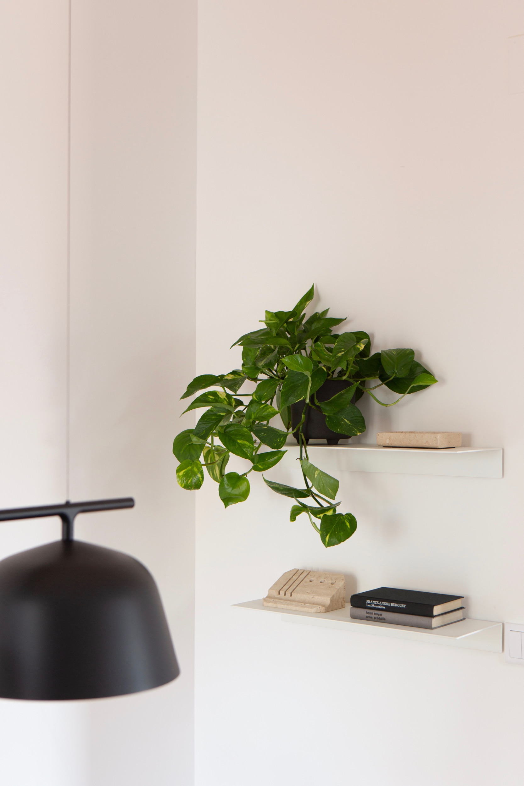 Detail photo of Lola Cwikowski Studio Travessa da Pereira Apartment residential project showing Muuto Ambit Rail lamp, BoConcept Como shelves, and plant.