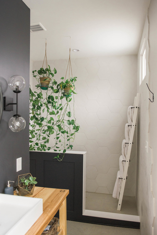 hanging-plants-interior-design.jpg