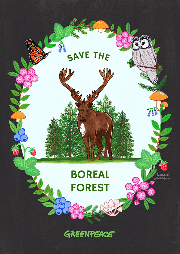 Boreal Forest Poster WEB 72 for MY SITES.jpg