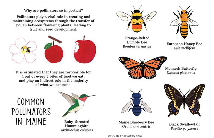 pollinate zine spread web 1_BORDER.jpg