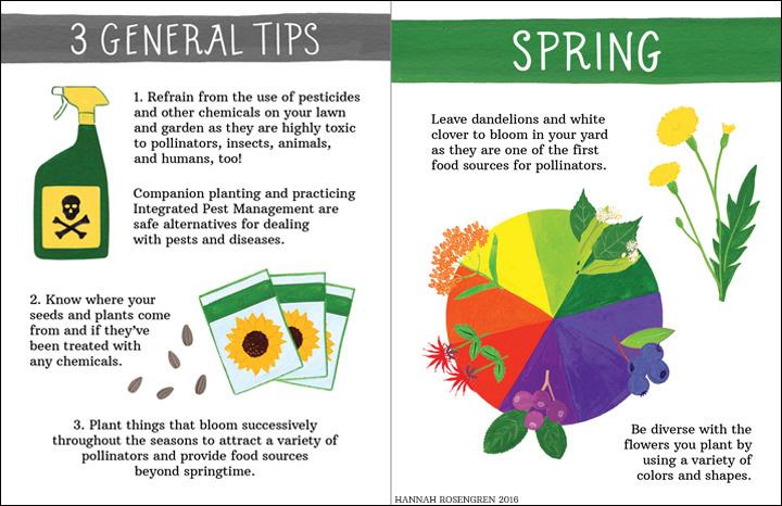 pollinate zine spread web 2_BORDER.jpg