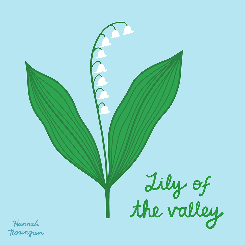 Lily of the valley procreate_WEB 72 RES_PNG.png