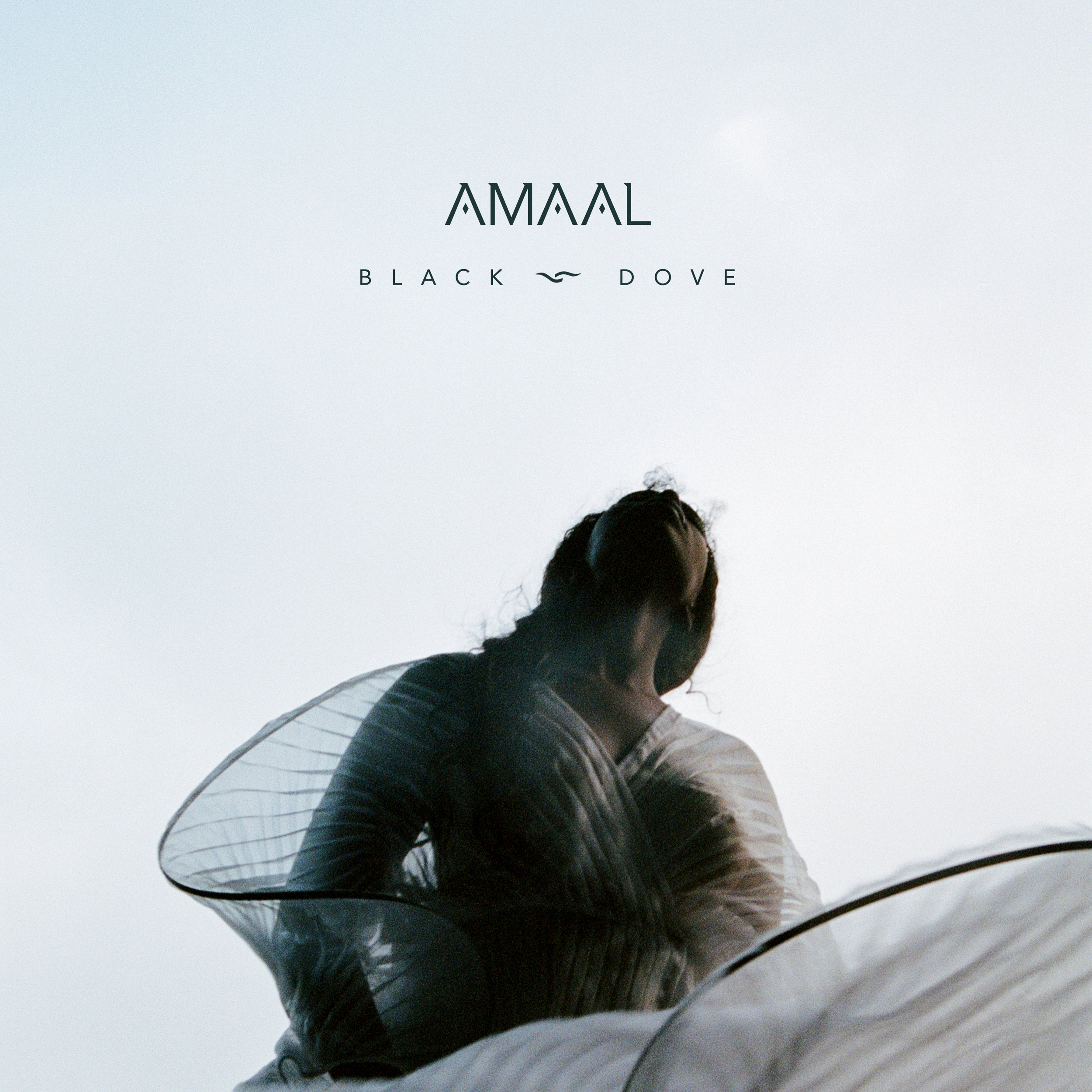Amaal - Black Dove.jpg