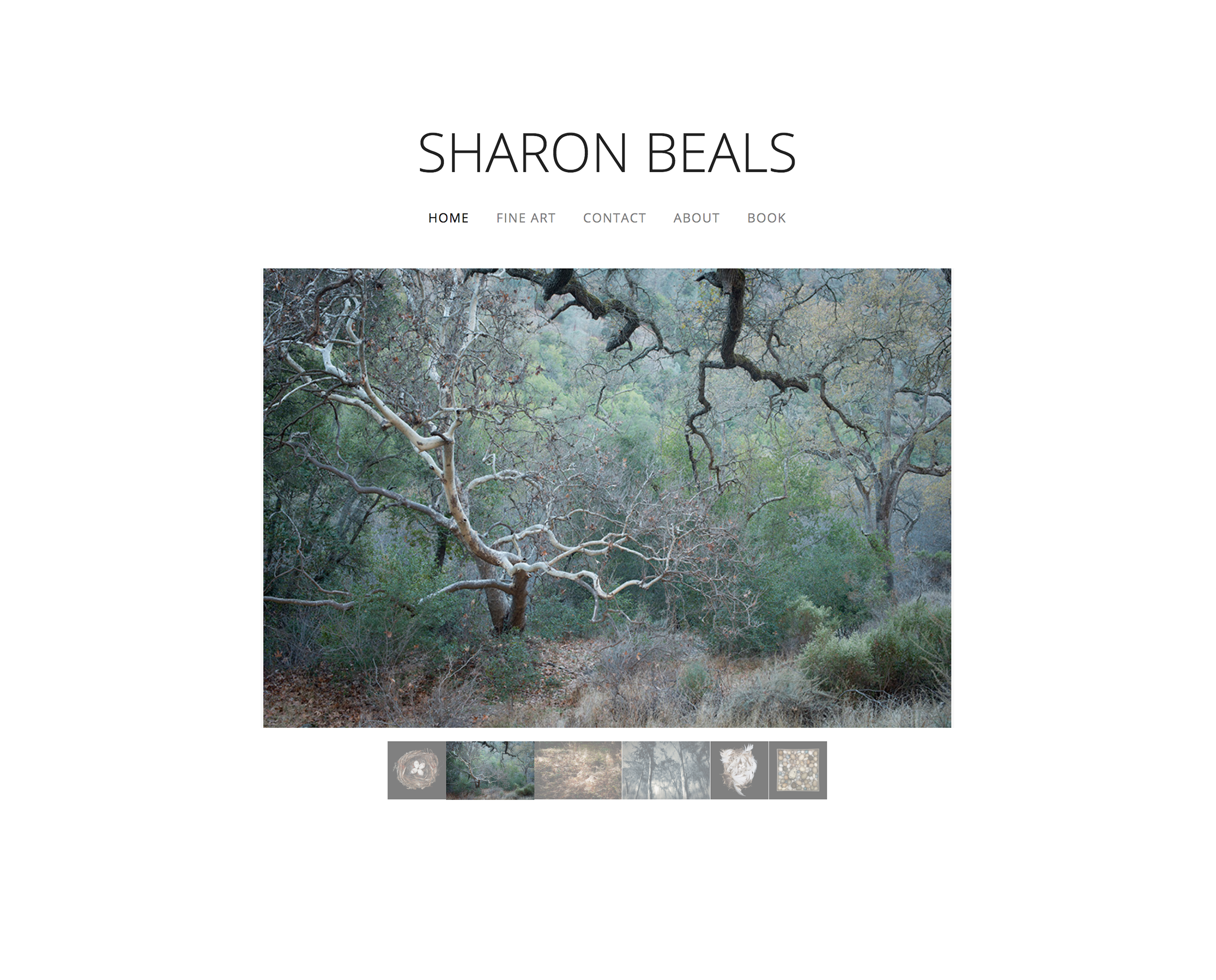 Sharon-Beals-site.png