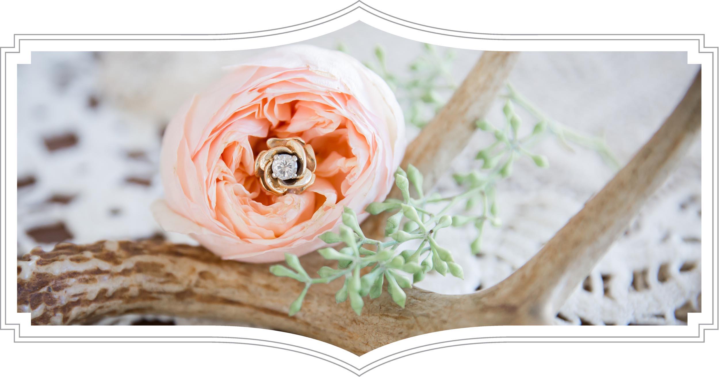 home-page-header-flower.jpg