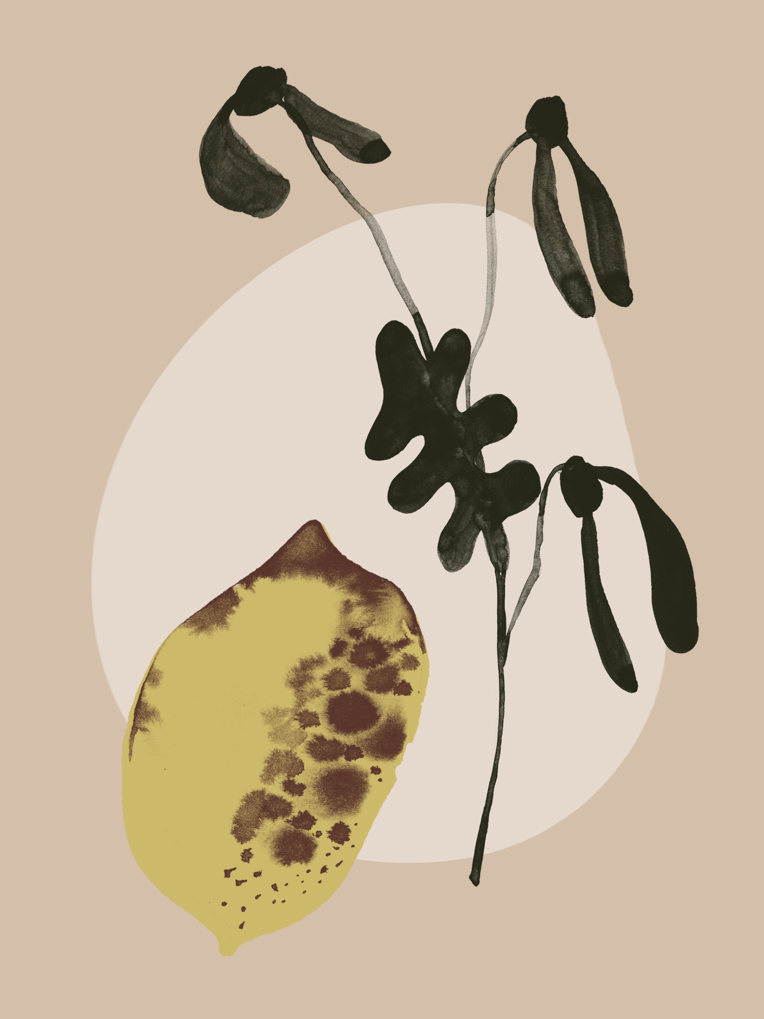 Lemon   Ink and Photoshop  2018, Fruit Series