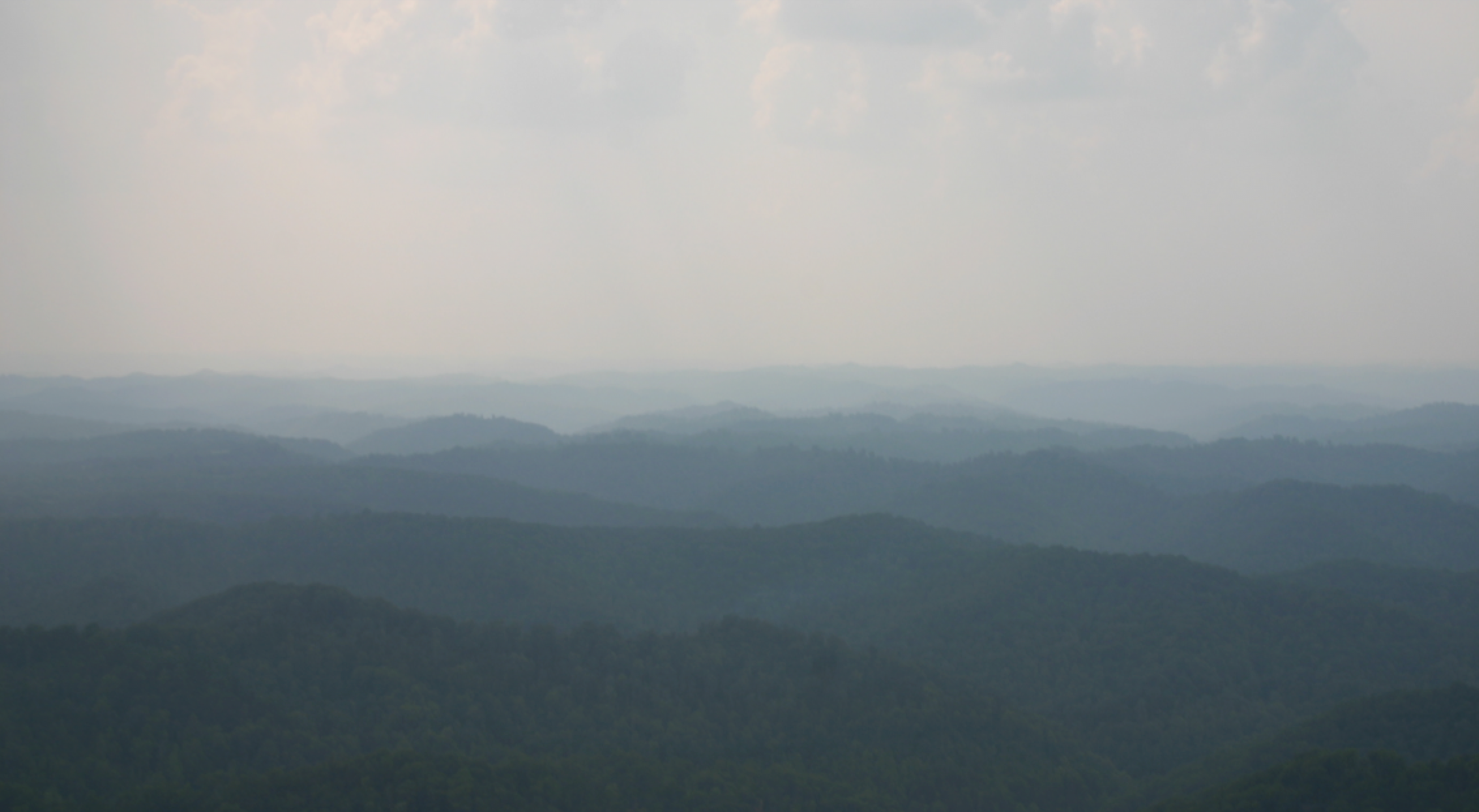 "In May of 2006, Neela went on the ""Writers and Photographers Tour"" to protest mountaintop removal mining. The tour was sponsored by KFTC. This is how all the beautiful Appalachian Mountains, where River lives, are supposed to look."