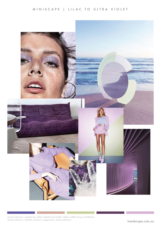 trendscape_Violet.jpg