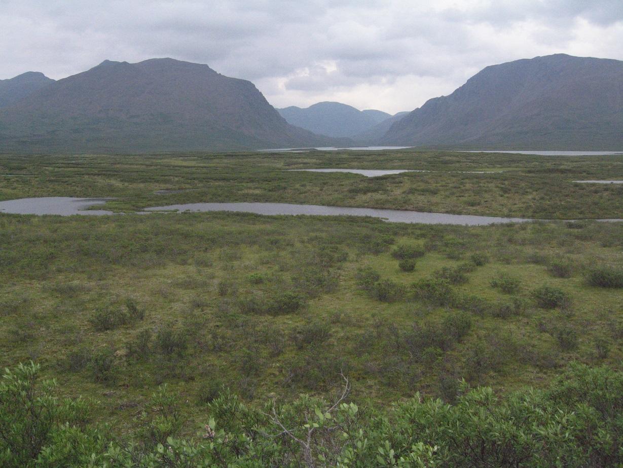 Alaska (3) 144 - reduced.jpg