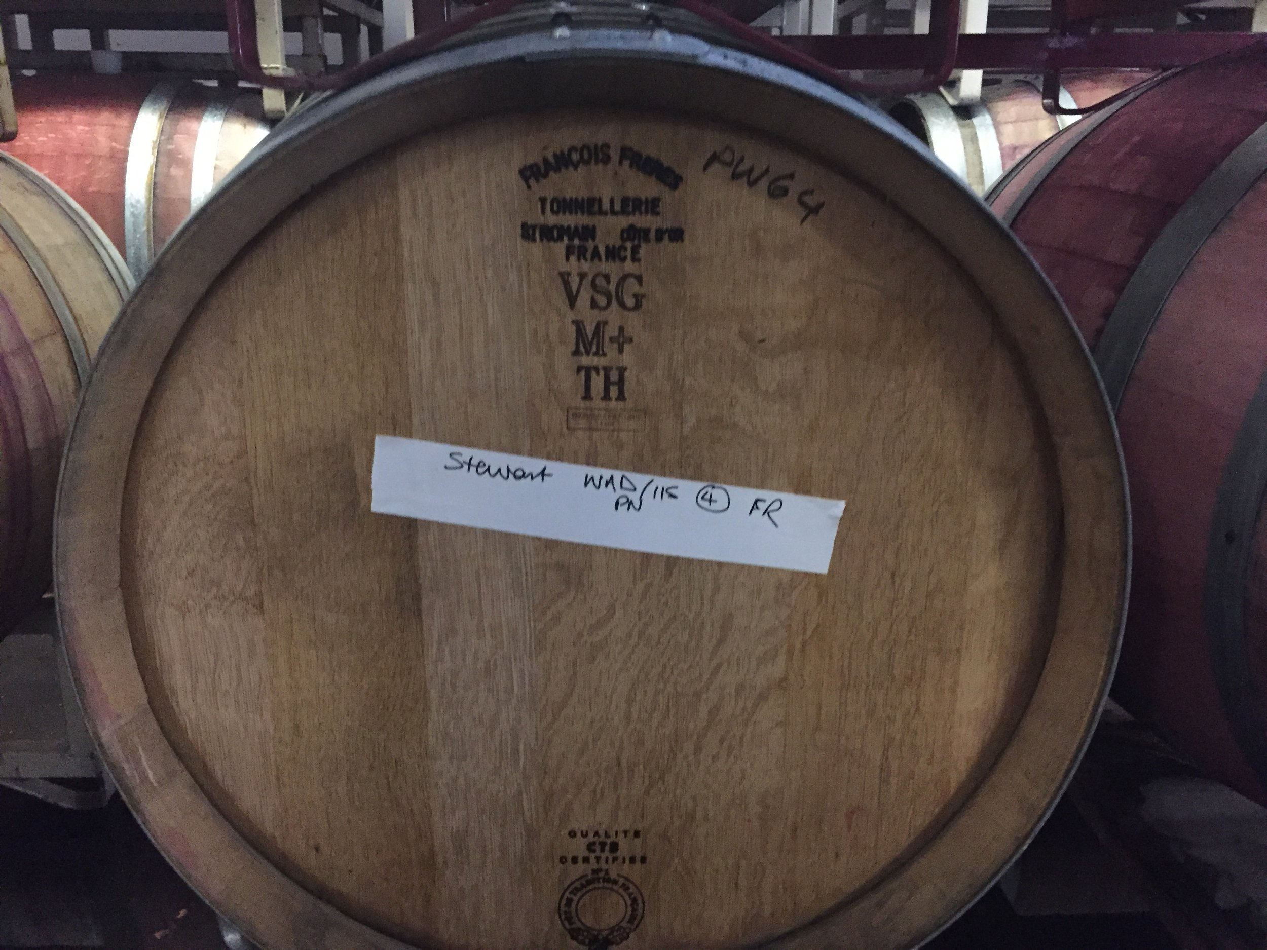 2018 Harvest - You'll find our 2018 grapes in bottles and barrels at Willful Wines, an urban winery in Portland. Winemaker/owner Pamela Walden ferments our carefully managed grapes using native, wild yeast and a minimum of new oak to focus on the fruit and produce the greatest expression of the terroir.