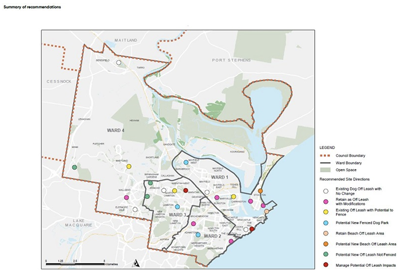 Recommendations from the City's recently released Dogs in Open Spaces strategy