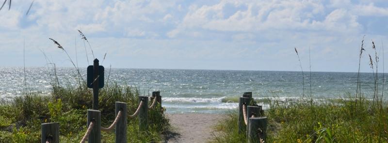 Turtle Beach Siesta Key