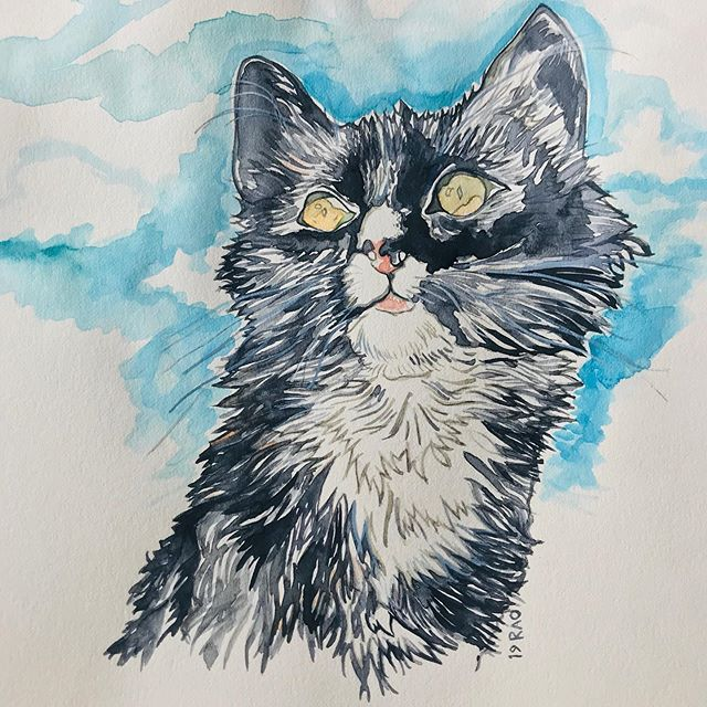 Thursday Kitty Muse in watercolors. Thank you @heyitsjulss for providing 📸of her gorgeous fur baby's! . . . . #kittycat #furrybaby #watercolor #instaartist #illustration #portrait #catsofinstagram #muse #painting #sketchbook