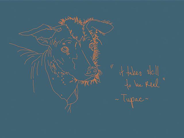 Enough said. . . . #dogportrait #tupacquotes #sniffdoghotel #animalillustration #og #dogsofinstagram #restdaystudios