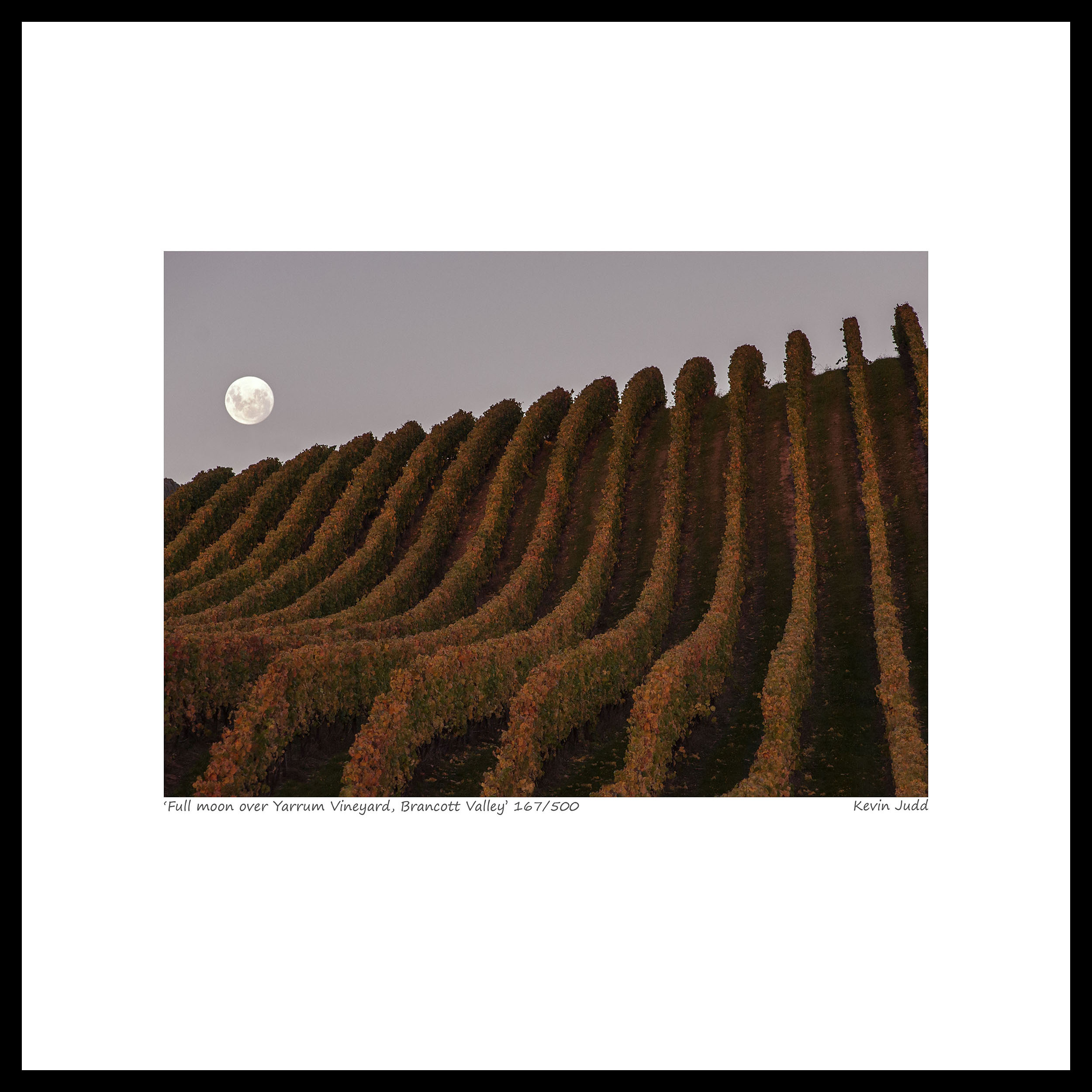 002 Full moon over Yarrum Vineyard